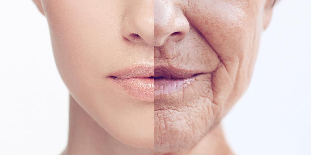 Элевационный механизм нейро-эндокринной программы развития, старения и возрастной патологии