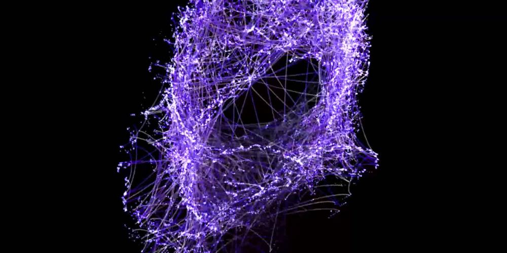 Взаимодействие основных гомеостатических систем в онтогенезе