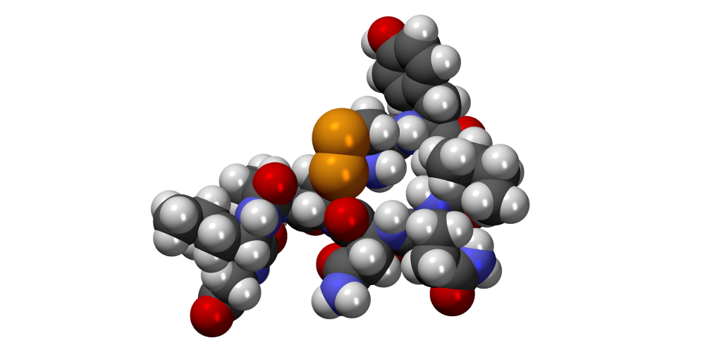 Гормоны вазопрессин и окситоцин