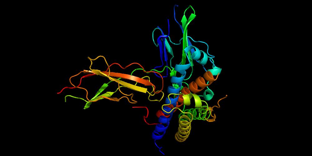 Тестирование белковых гормонов