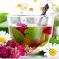 Травы для фитотерапии