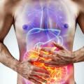 intestino-bacterias-corpo-humano-0618-1400x800-2-1080x675